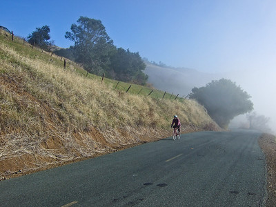 The road up slope on the left is in bright sunlight, while the road on the right is in thick fog.